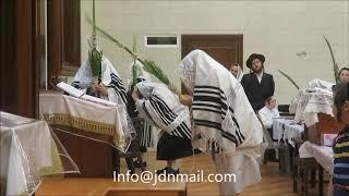 Sukkos 5778 With Nikolsburg Rebbe
