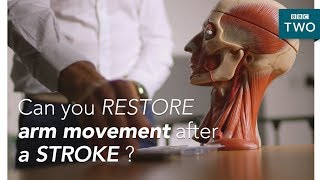 Can we restore arm movement after a stroke?  - Trust Me I'm a Doctor - BBC Two