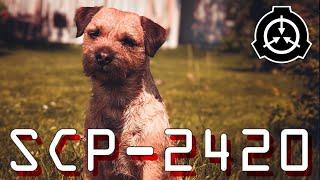 SCP-2420 | A Good Dog