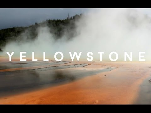 VLOG: Yellowstone Two | gotcathy