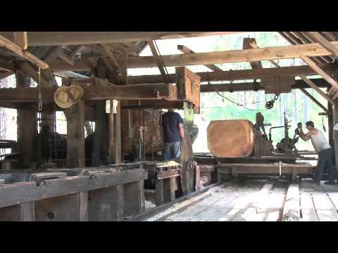 Steam Powered 1800s Circular Sawmill Sawing Huge 36 Wa