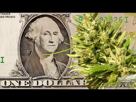 Government To Sell Pot For $1 A Gram (In Uruguay) - Why?
