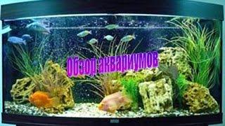 Обслуживание аквариума(, 2015-04-10T15:00:06.000Z)