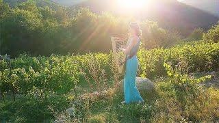 "Celtic Harp Solo ""Everywhere""  (Harfenmusik, harpe celtique) // Nadia Birkenstock"