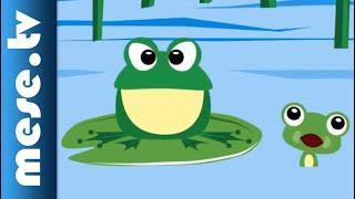 Vilmos Gryllus: Froggie | Half Minute Song | MESE TV