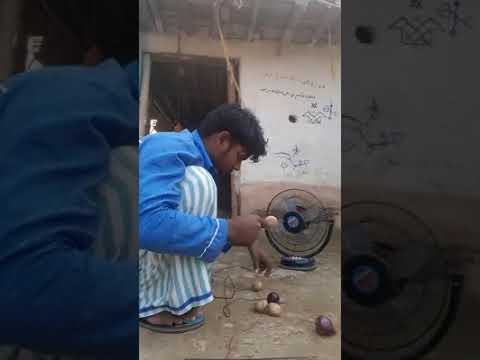 Fan running on electricity from onions and potatoes renewable energy green energy