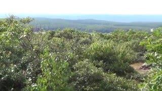 Brace, Mt. Frissell, Roขnd & Alander Mountains Hike (4 Peaks in 3 States) Pt 1 of 4