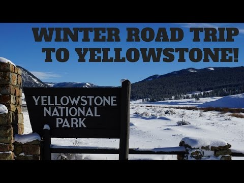 Winter Road Trip To Yellowstone