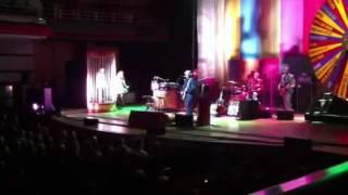 Elvis Costello revolver tour, king horse