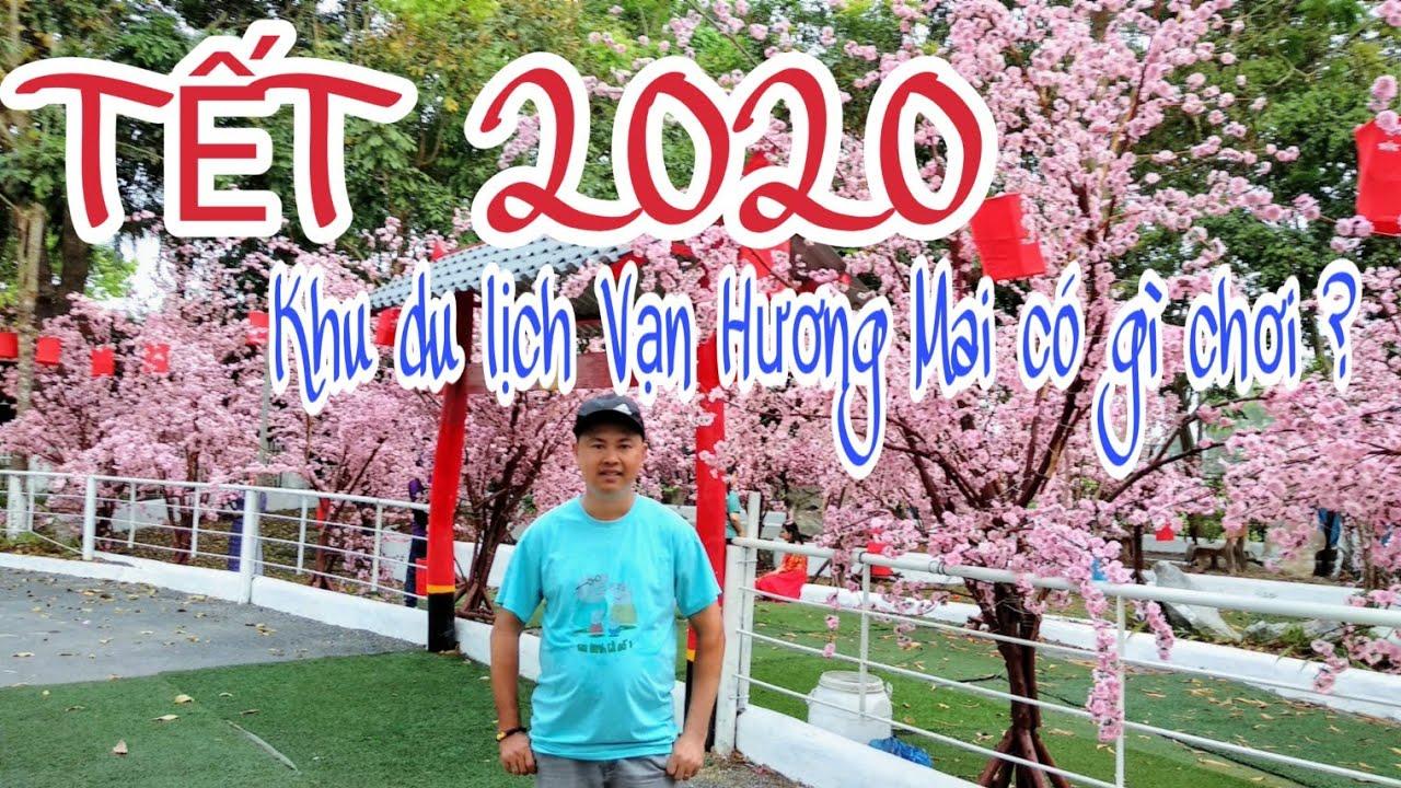 TẾT 2020 - Khu du lịch Vạn Hương Mai có gì vui -