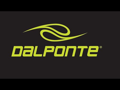 Dalponte   - Programa Brasil em Foco