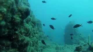 Подводная охота на море #6