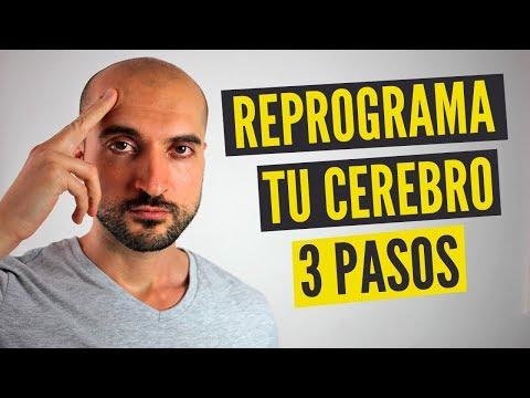 Cómo Reprogramar Tu Cerebro Para Tener Éxito (en 3 Pasos)