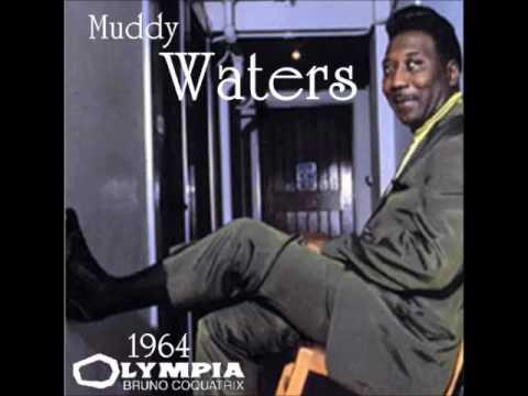 Muddy Waters - Live in Paris 1964