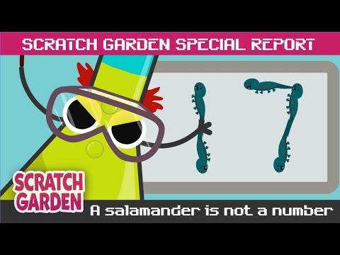 SPECIAL REPORT: A Salamander is NOT a Number! | Scratch Garden