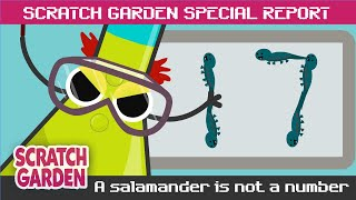 SPECIAL REPORT: A Salamander is NOT a Number! | Scratch Garden