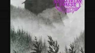 Watch Carpathian Forest When Thousand Moon Have Circled video