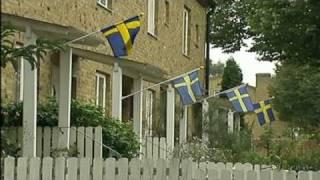 Sverigedemokraterna nära en riksdagsplats (Rapport SVT 20090717)