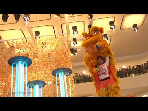 Hong Kong Chinese Lunar New Year 2017 - Lion Dance Performance @ Pacific Place