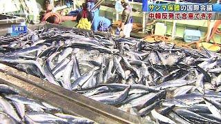 """サンマの""""漁獲量制限"""" 中韓の反発で合意できず(17/07/16) thumbnail"""