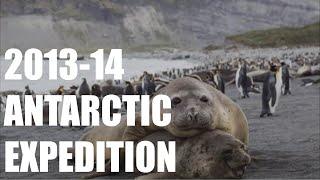 Antarctica Expedition 2013-14: South Georgia and Falkland Islands Nature Slide Show