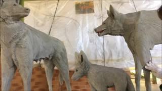 Escultura em concreto de Lobo Guará - Maned Wolf concrete statue