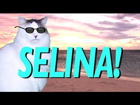Happy Birthday Selina Epic Cat Happy Birthday Song