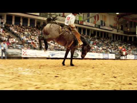 Tyler Rice - Wilson & T4 Ranches (2)