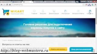 видео Блог вебмастера