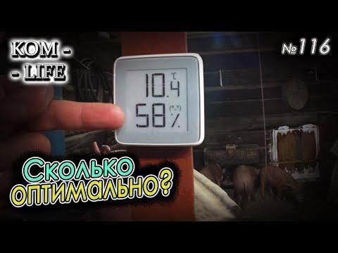 Температура и влажность 🌡 в сарае у свиней