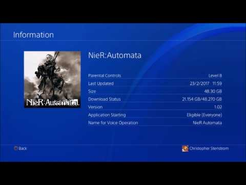 Check this out before you start playing Nier: How to passed the questions in Nier Automata