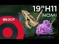 Обзор телевизора Nomi 19H11
