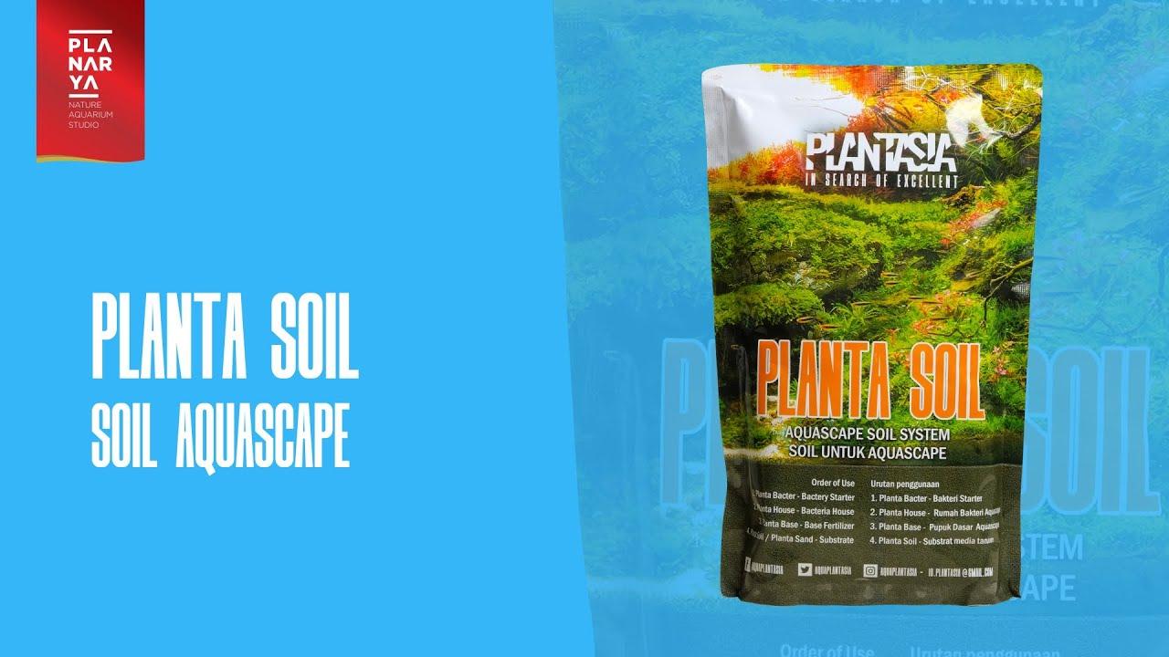 PLANTASIA - Planta Soil