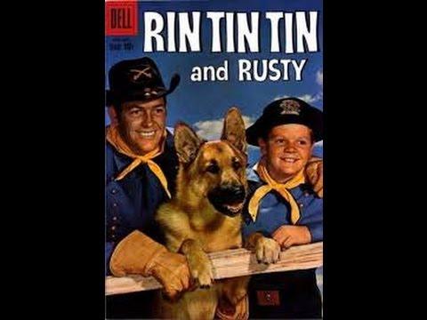 Rin Tin Tin Sua História e O que Aconteceu com os Artistas.