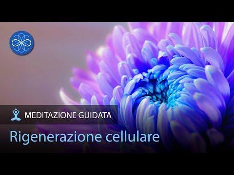 Rigenerazione cellulare  