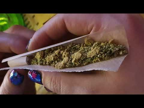 Amsterdam Coffeeshop Tour 2020 - Part 1 - Amnesia