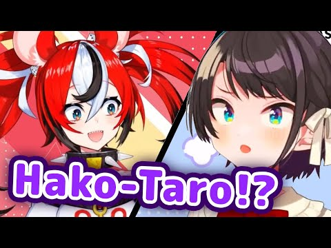 Subaru Found Out About Bae's Nickname That Polka Made For Her 【ENG Sub/Hololive】
