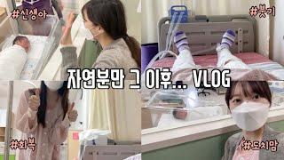 [출산vlog] 자연분만의 회복과정(feat.산후조리식…