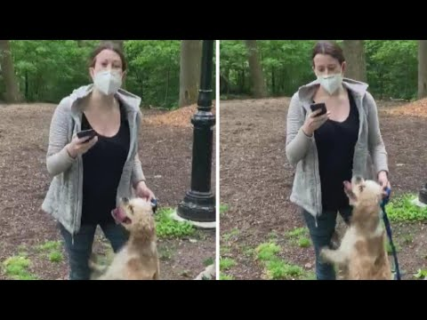 birdwatcher-talks-recording-video-of-woman-with-dog-in-park