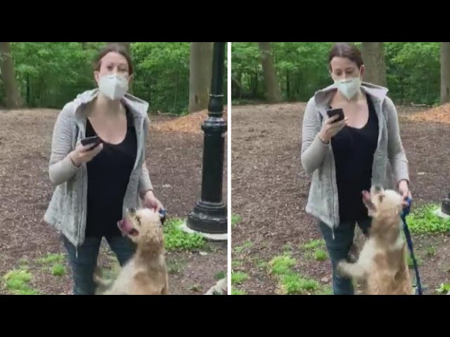 Birdwatcher Talks Recording Video of Woman with Dog in Park