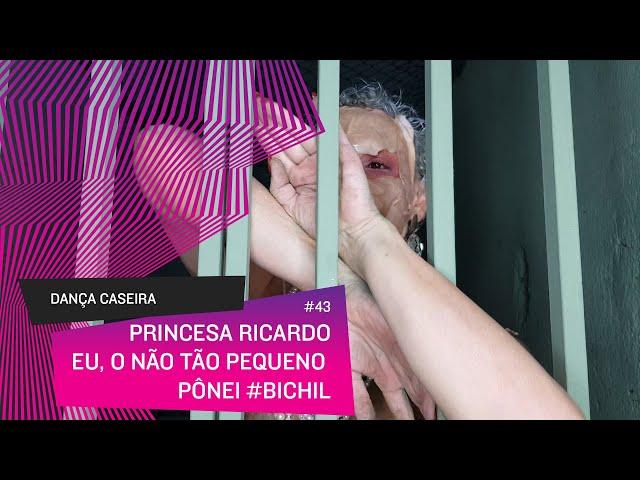Dança Caseira: Princesa (ep 43) - eu, o nem tão pequeno pônei #bichil