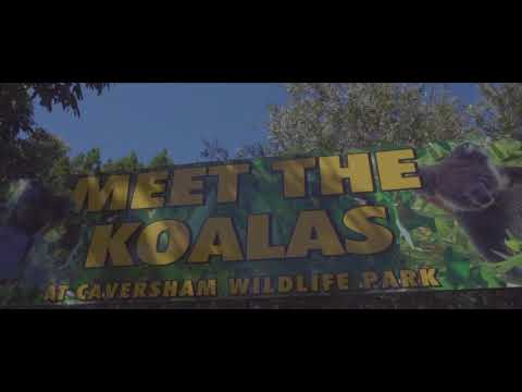 Perth Travel Vlog 2018 | Day 03 | Caversham Wildlife Park
