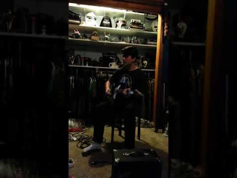 David's Harmony Bobcat