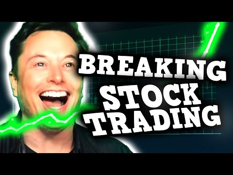 HOW TO BREAK THE STOCK MARKET WITH ELON MUSK - Stock Market Is Perfectly Balanced With Dogecoin