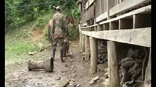 ELN Kolumbien - Das Leben als Guerilla ( Dokumentation)
