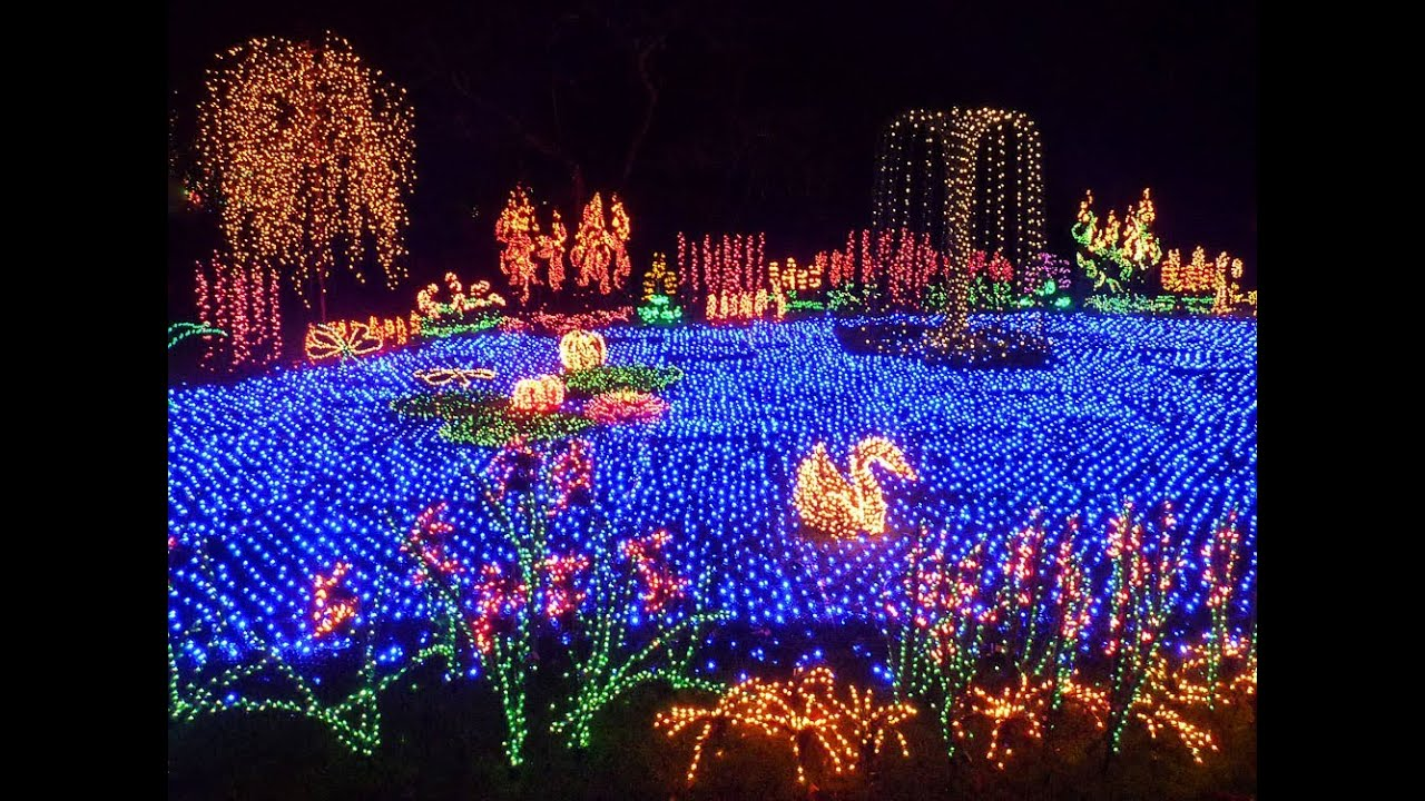 The garden d39lights event at the bellevue botanical garden for Botanical gardens christmas lights