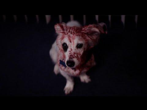 """'Into The Dark' Season 2 Episode 9 """"Good Boy"""""""