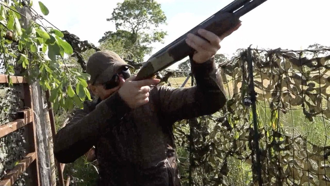 The Shooting Show - Irish crow-shooting century - YouTube