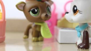 ❀Littlest Pet Shop: Behind the Scenes (Grocery Store)