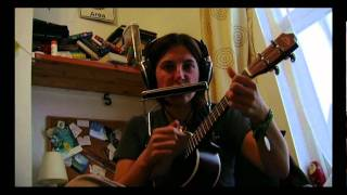 Nobody In Particular Original Ukulele And Harmonica Song